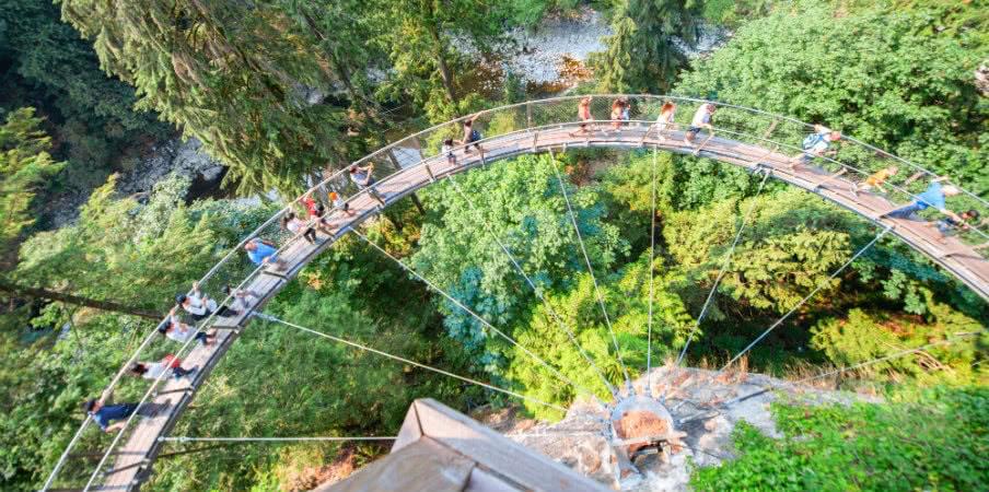aerial view suspension bridge