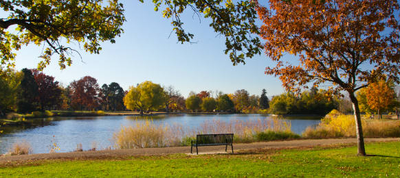 empty park bench by scenic lake in the fall