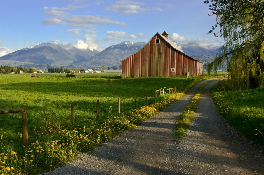 Farm in Chilliwack