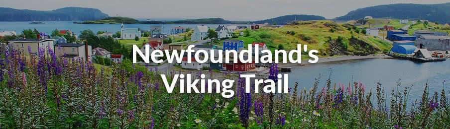 Newfoundland Viking Trail in Canada banner