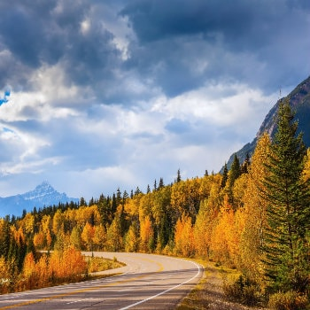 Driving through the Rocky Mountains in autumn