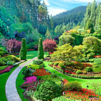 A view of the sunken garden at Butchart Gardens